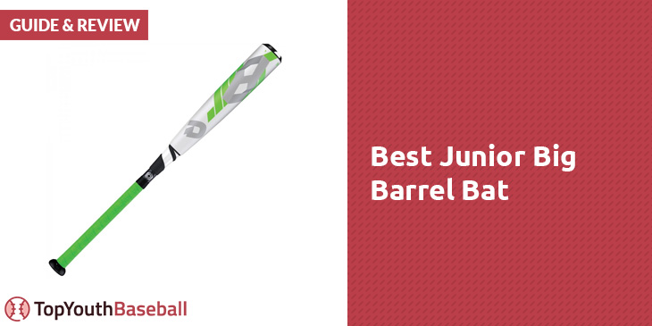 Best Junior Big Barrel Bat